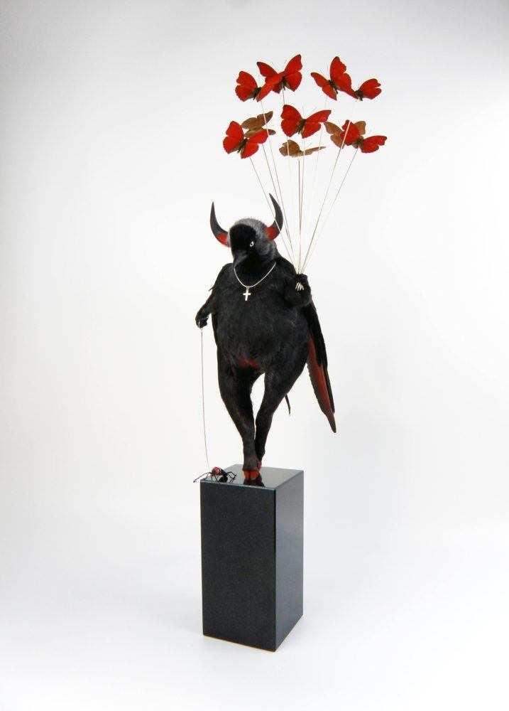 Harbinger (Sus monedula) | Taxidermy Artist | Janec van Veen | Playful and Horrific, Wondrous and Terrifying